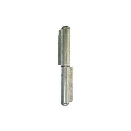 Cerniera a saldare 2 ali 100 mm. in acciaio inox Aisi 304